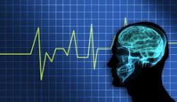چگونه همکاری تصویربرداری مغزی و رایانه کمک میکند تا ذهن انسان را بخوانیم؟