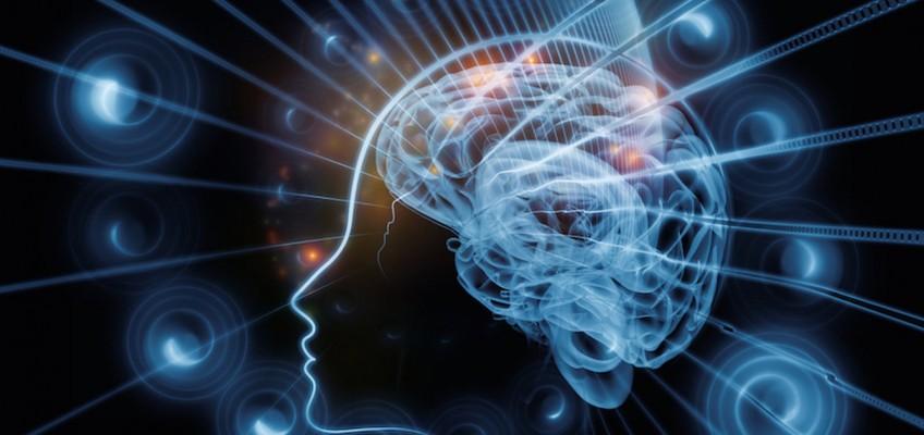 کشف مکانیسمی در مغز که از بروز افکار ناخواسته جلوگیری میکند