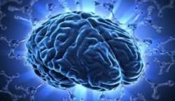 شناسایی ناحیهای در مغز که سبب شکلگیری تجربة معنوی میشود