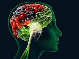 چه رابطهای میان ارتباطات مغزی و عملکرد شناختی با مواد مغذّی وجود دارد؟